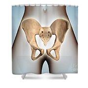 Anatomy Of Pelvic Bone On Female Body Shower Curtain