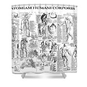 Anatomy Of The Human Body  1728 Shower Curtain