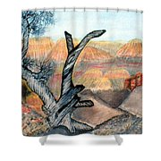 Anceint Canyon Watcher Shower Curtain