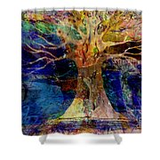 Ancestral Place  Shower Curtain