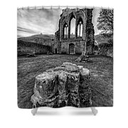 Ancient Abbey Shower Curtain