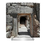Ancient Arch Shower Curtain