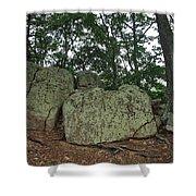 Ancient Boulders Shower Curtain