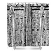 Ancient Church Door Shower Curtain