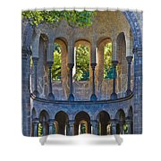 Ancient Dreams Shower Curtain