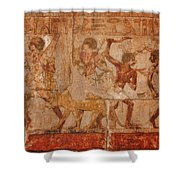 Ancient Egyptian Art Shower Curtain