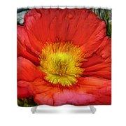 Ancient Flower 4 - Poppy Shower Curtain