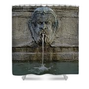 Ancient Fountain Shower Curtain