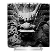 Ancient Guardian Shower Curtain