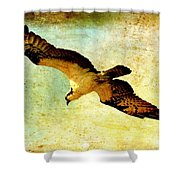 Ancient Hunter Shower Curtain