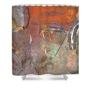 Ancient Orange Shower Curtain