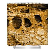 Ancient Rock In Canyonlands 2 Shower Curtain