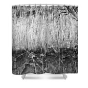 Ancient Sagebrush 2 Shower Curtain
