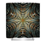Ancient Shield Shower Curtain
