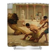 Ancient Sport Shower Curtain