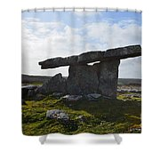 Ancient Tomb Shower Curtain
