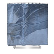 Ancient Upholstery Shower Curtain