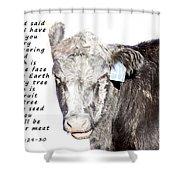 And God Said Shower Curtain
