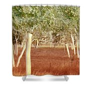 And The Trees Danced Shower Curtain