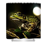 And This Frog Can Sing Shower Curtain by Bob Orsillo