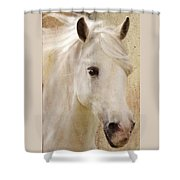 Andalusian Dreamer Shower Curtain