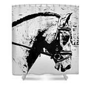 Andalusian Elegance Shower Curtain