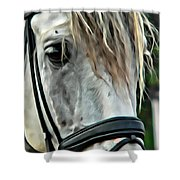 Andalusian Eye Shower Curtain