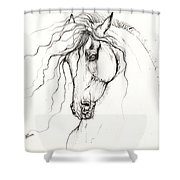 Andalusian Horse Drawing 04 11 2013 Shower Curtain