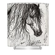 Andalusian Horse Drawing 2 Shower Curtain