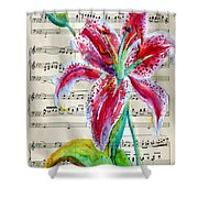 Andante Cantabile Romance  Page 64 Shower Curtain