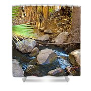 Andreas Creek In Indian Canyons-ca Shower Curtain
