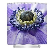 Anemone Close Up Shower Curtain