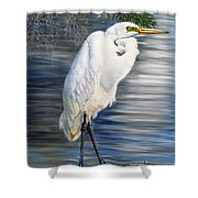 Angel At Sylvia's Pond Shower Curtain