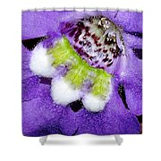 Angel Face Blue - With Extra Petals And 3 Stamen Shower Curtain