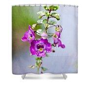 Angel Face Flower - Summer Snapdragon Shower Curtain