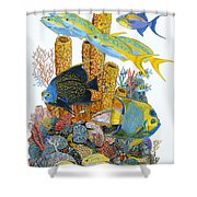 Angel Fish Reef Shower Curtain
