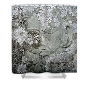Angel In Disguise Shower Curtain
