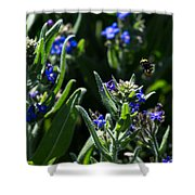 Angel Island Bee Shower Curtain