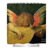 Angel Musician Shower Curtain