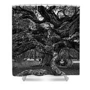Angel Oak Tree 2 Shower Curtain