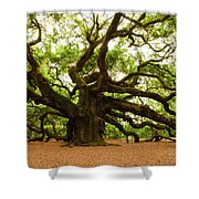Angel Oak Tree 2009 Shower Curtain by Louis Dallara