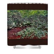 Angel Oak Tree 3 Shower Curtain