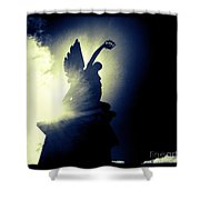 Angel Of Africa Shower Curtain