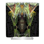 Angel Of Locks And Lost Items Shower Curtain