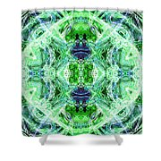 Angel Of The Earth Shower Curtain