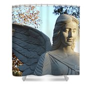 Angel Of The Morning Shower Curtain by Kevin Croitz