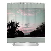 Angel On Pink Cloud Shower Curtain