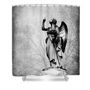 Angel Series 05 Shower Curtain