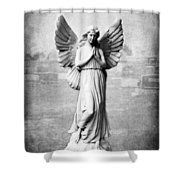 Angel Series 06 Shower Curtain
