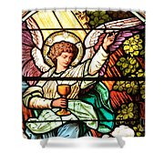 Angel With A Chalice Shower Curtain